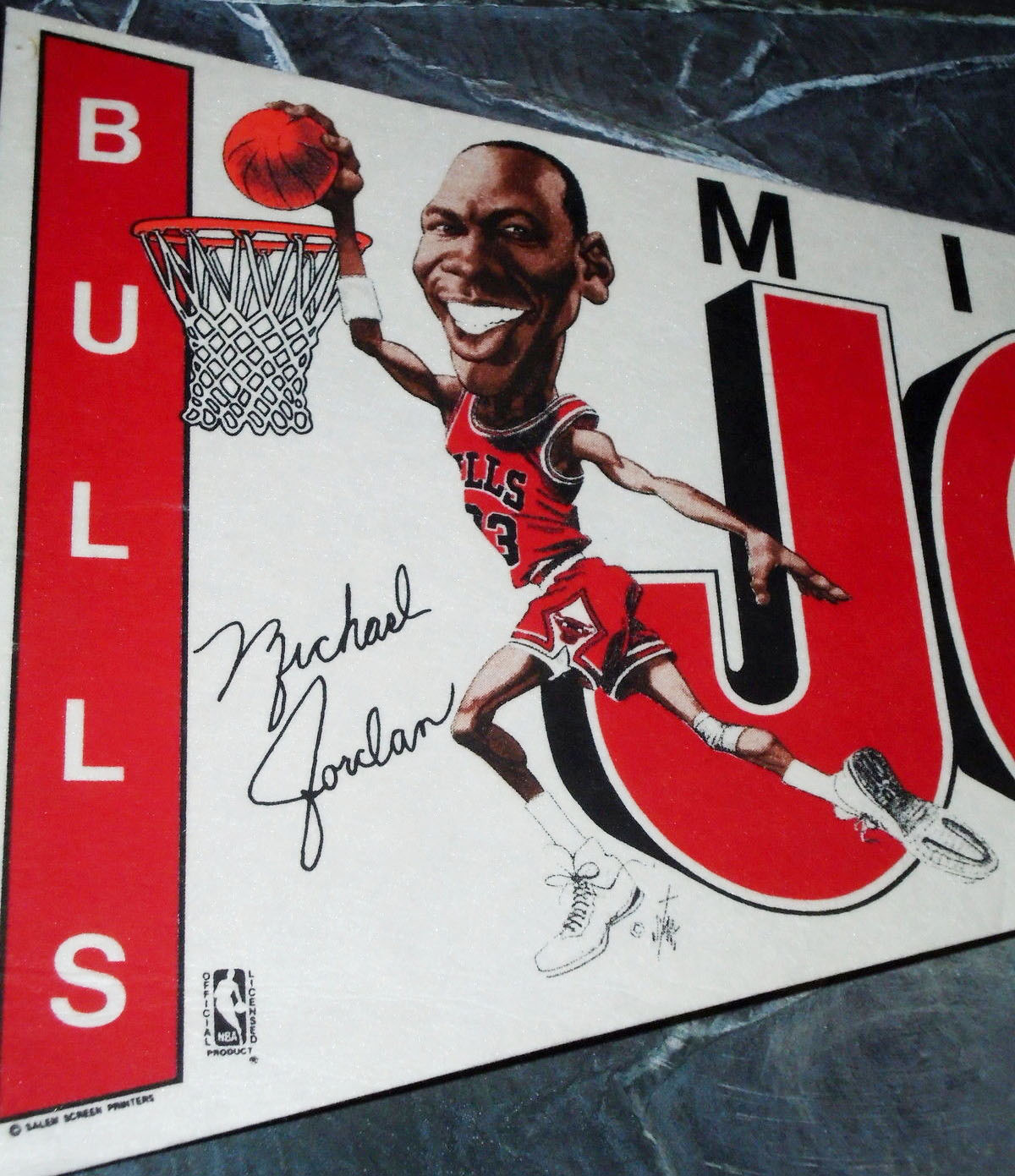 michael-jordan-bulls-pennant-bruce-stark-2